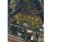 Lokalita určená k developerským účelům, v k. ú.Cheb, náměstí ProkopaHolého